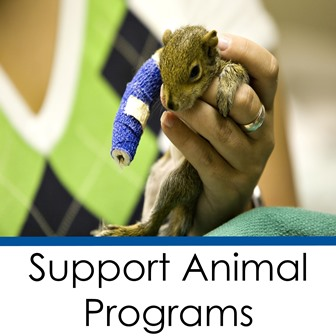 Support Animal Programs